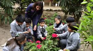 Beneficios de la educación ambiental en los niños