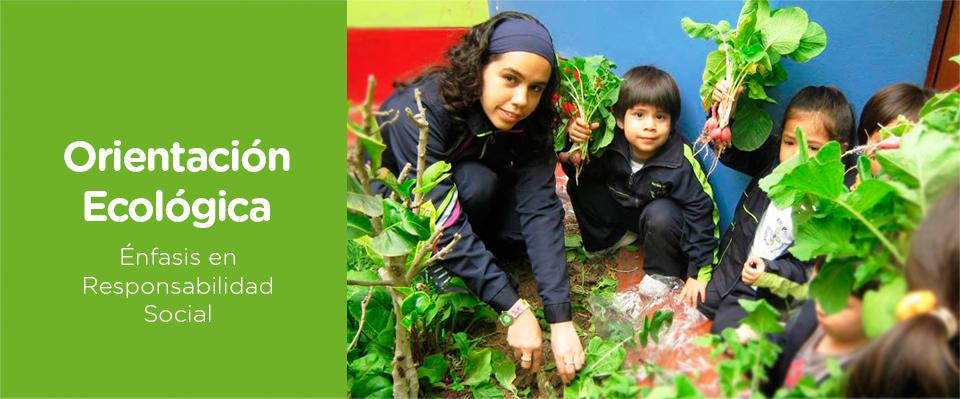educación ecológica